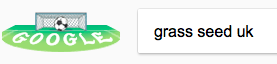 typing-grass-seed-uk-into-google.png